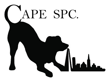 CAPE SPC: Exhibiting at Leisure and Hospitality World